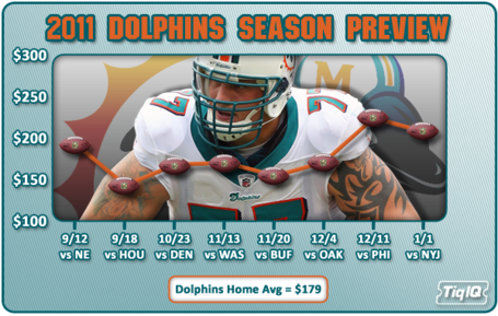 2011dolphins_medium