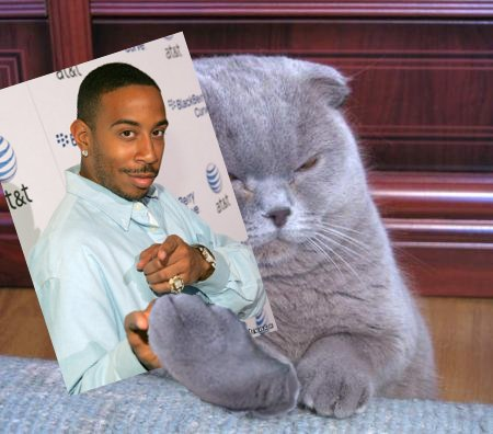 Fiskers_ludacris_medium