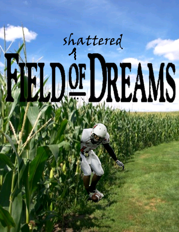 Fieldofshattereddreams_medium