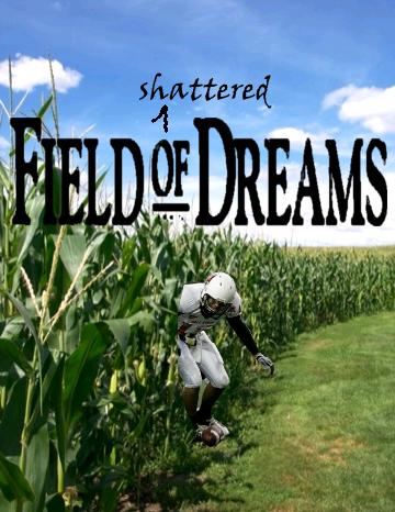 Fieldofshattereddreams_medium