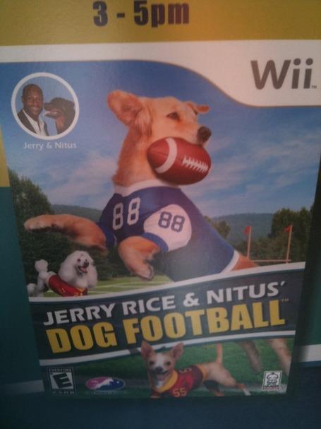 Jerryricefootball_medium