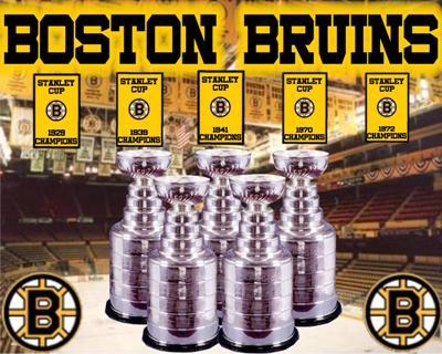 Bruins_medium