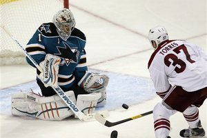 86190_coyotes_sharks_hockey_medium