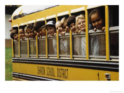 School_bus_medium