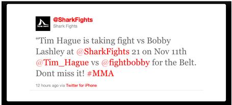Shark_fights_medium