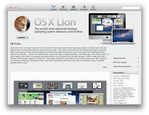 Lion-300-013