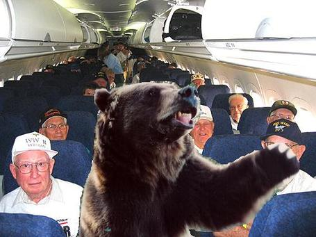 Bears-on-a-plane_medium