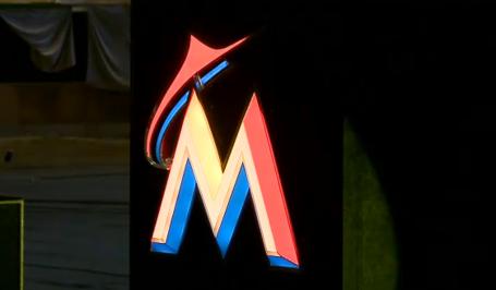 Marlins5_medium