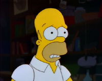Homer1_medium