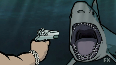 Archer_shark_medium
