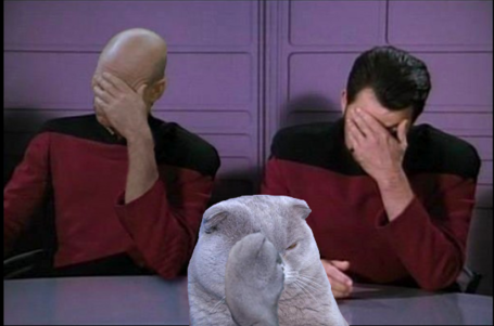 Fiskers_double_facepalm_medium