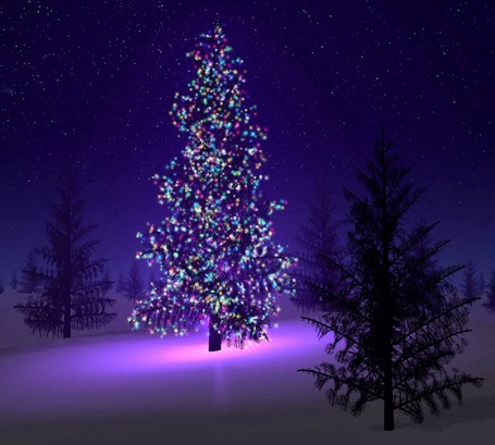 Beautiful-christmas-tree_medium
