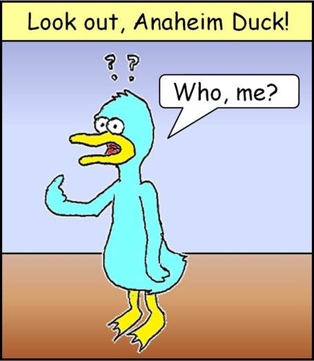 Look_out_duck_1_medium