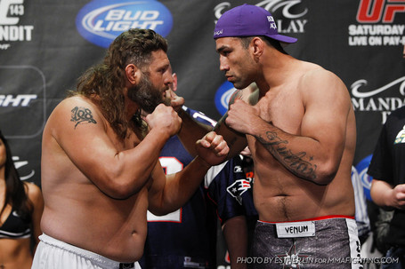 031_roy_nelson_and_fabricio_werdum_medium
