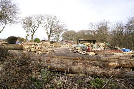 Lumberyard_-_geograph