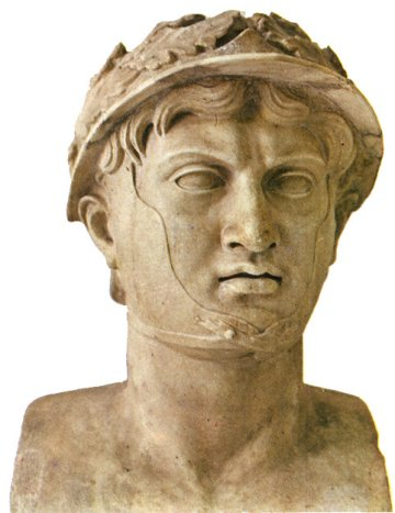 Pyrrhus_medium