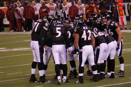 Ravens-huddle_medium