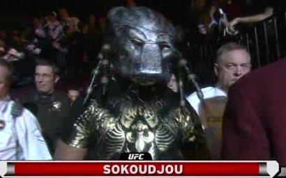 Sokoudjou Predator
