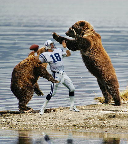 Bears-attacking-peyton-manning_medium_medium