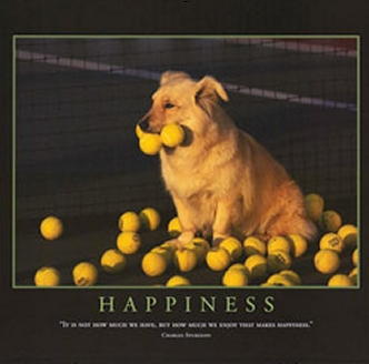 Allposterscom-dog-calendar-3-tennis-balls_medium