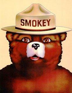 Smokey-the-bear_medium
