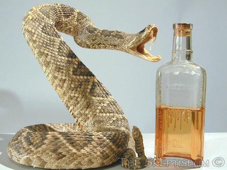 Snake_and_oil_medium