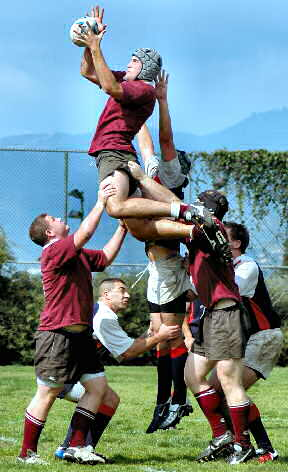 Rugby_lineout_medium