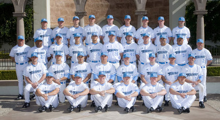 2008-basebl-team_medium