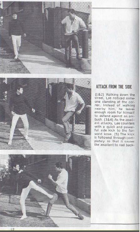 Bruce lee self defense techniques pdf