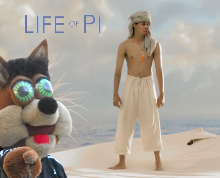 土狼寿命 -  pi