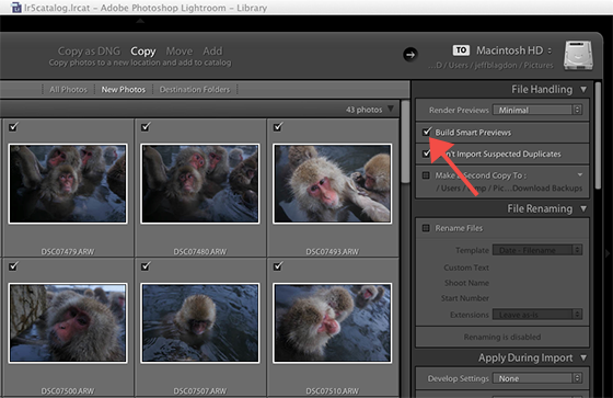 Adobe Lightroom 5 beta: hands-on with Smart Previews, radial