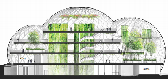 Amazon Planning Giant Greenhouse Offices For Its New