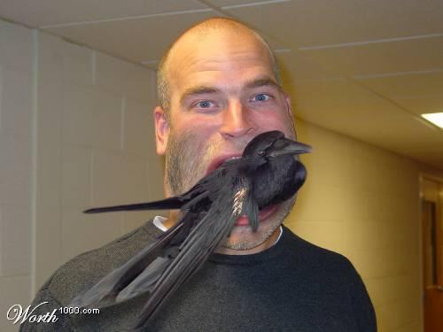 Eating_Crow.jpg