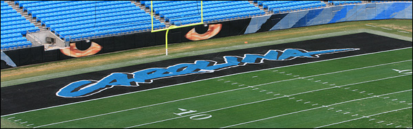 panther stadium coloring pages - photo#44